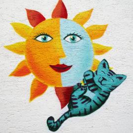 Sonne mit Kätzchen